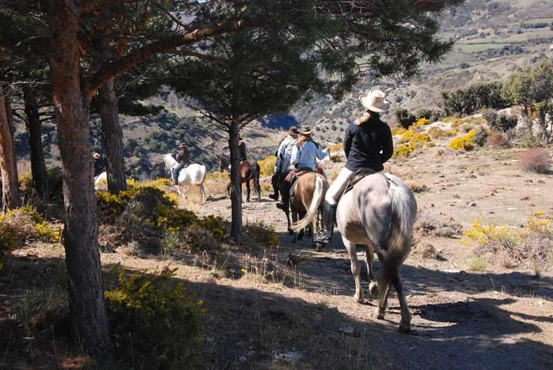 bubion-torvizcon-trek-20120415-180308-800x600