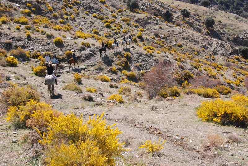 bubion-torvizcon-trek-20120415-180317-800x600