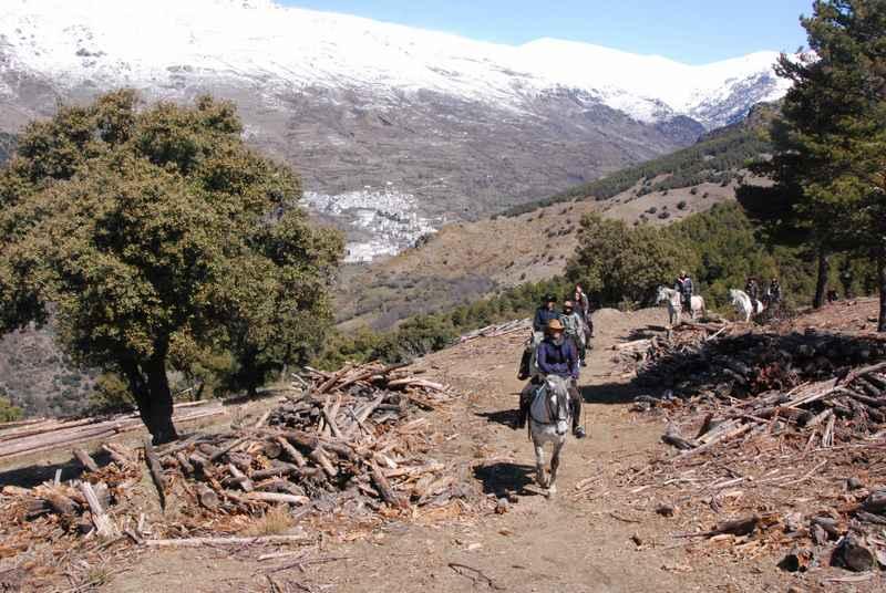 bubion-torvizcon-trek-20120415-180351-800x600