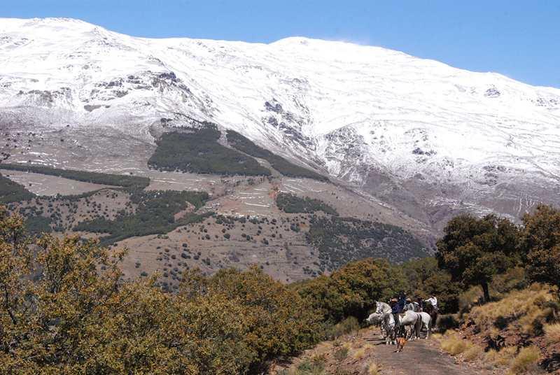 bubion-torvizcon-trek-20120415-180357-800x600