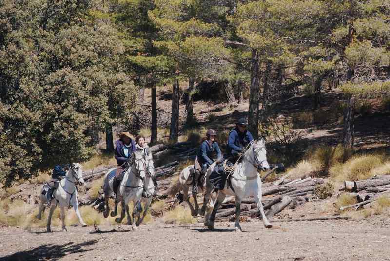 bubion-torvizcon-trek-20120415-180380-800x600