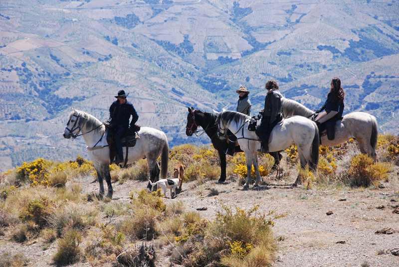 bubion-torvizcon-trek-20120415-180432-800x600