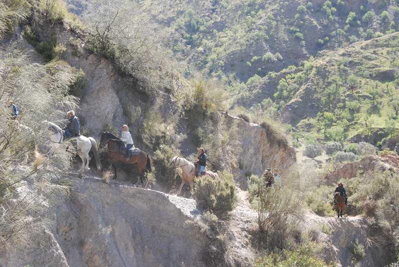 bubion-torvizcon-trek-20120415-180975-800x600