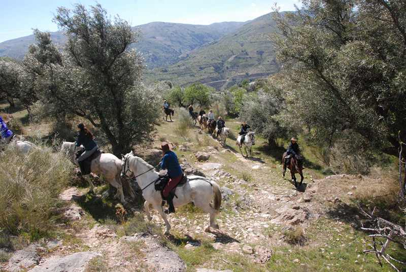 bubion-torvizcon-trek-20120415-181040-800x600