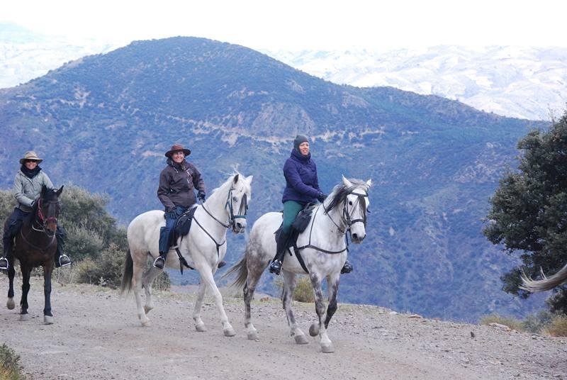 bubion-torvizcon-trek-20120415-181192-800x600