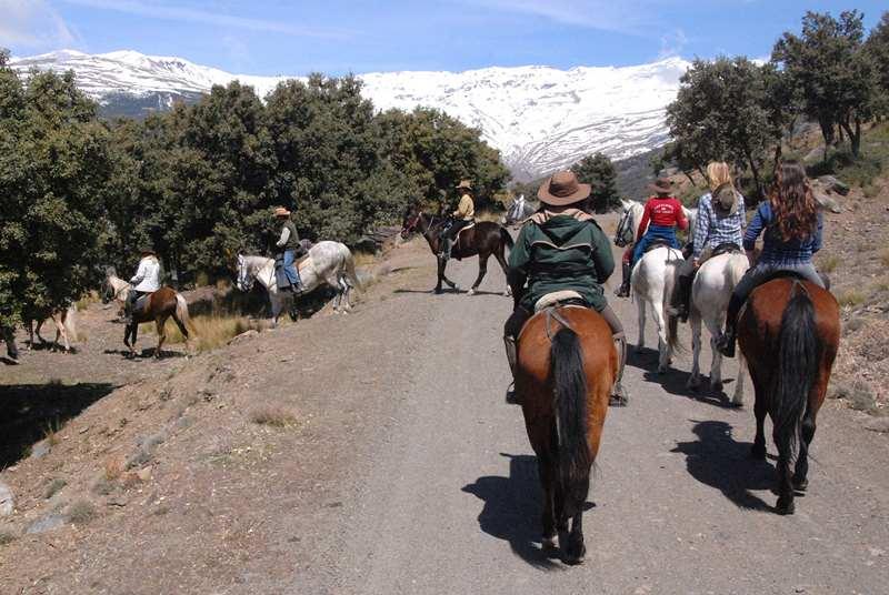 bubion-torvizcon-trek-20120415-181367-800x600