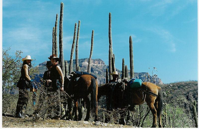 mexico-2001-1-800x600