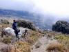 bubion-torvizcon-trek-20120415-180055-800x600