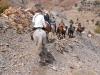 bubion-torvizcon-trek-20120415-180140-800x600