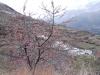 bubion-torvizcon-trek-20120415-180225-800x600