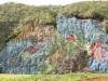 d_muro-de-la-prehistoria-800x600