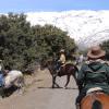 Ruta Alpujarras II 2017