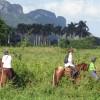 Cuba Oeste