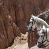 Sierra Nevada-Tabernas Desert Route 2017